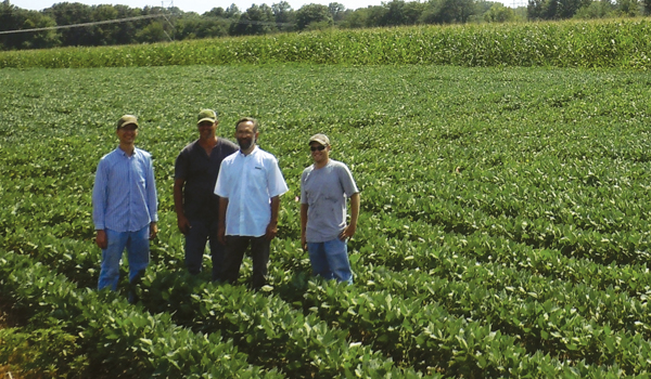 Sustainablecorn Org Project Field Trials